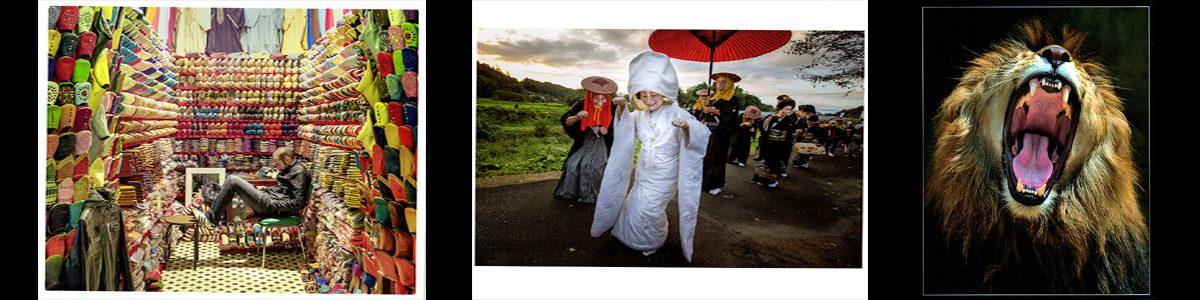 第42回千葉県民写真展の結果発表。自由の部です。画像をクリックで詳細ページへ