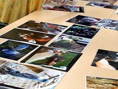 第21回「千葉市動物公園の四季写真コンテスト」入賞作品審査