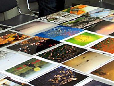 第9回千葉の自然写真コンテストの応募作品審査報告