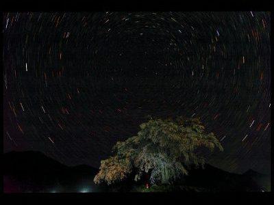 【入賞者発表】第43回千葉県民写真展「ネーチャーの部」