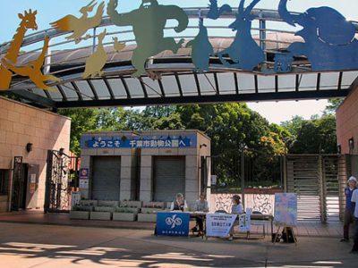 第22回「千葉市動物公園の四季」写真コンテストの撮影会を開催