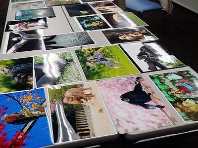 第22回 千葉市動物公園の四季写真コンテストの入賞作品審査