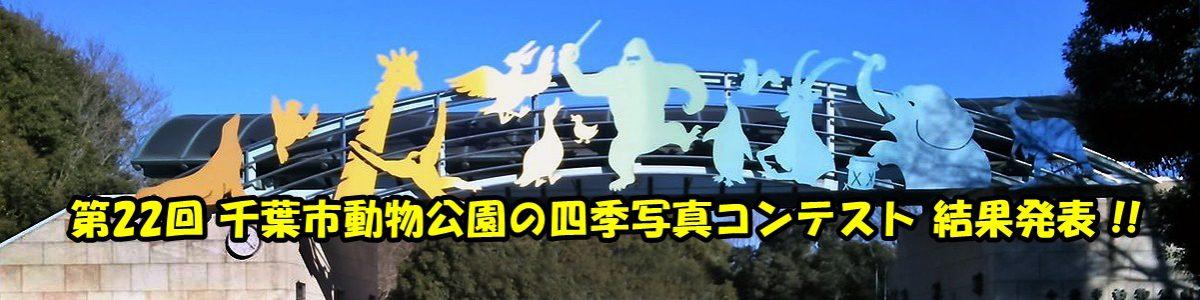 < 手動スライド ショー >第22回千葉市動物公園の四季写真コンテストの結果は上の写真をクリックしてご覧下さい