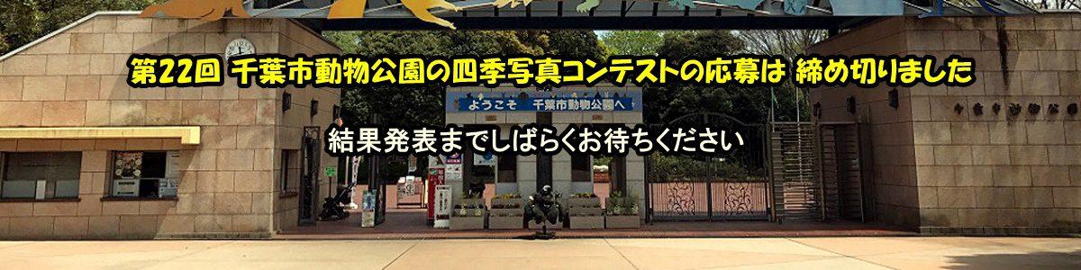 < 画像5枚の手動スライド ショー >第22回 千葉市動物公園の四季写真コンテストの詳細は上の写真をクルックしてご覧下さい。