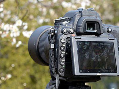千葉県本部が今年度のデジタル写真講習会を開催
