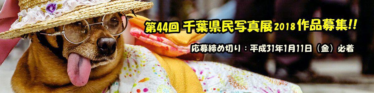 <5枚の手動スライド ショー >第44回千葉県民写真展作品募集は上の写真をクリックしてご覧下さい