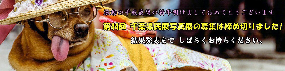 <5枚の手動スライド ショー >昨年の第43回千葉県民写真展の入賞作品は上の写真をクリックしてご覧下さい。