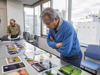 第11回 「千葉の自然写真コンテスト」の応募作品審査