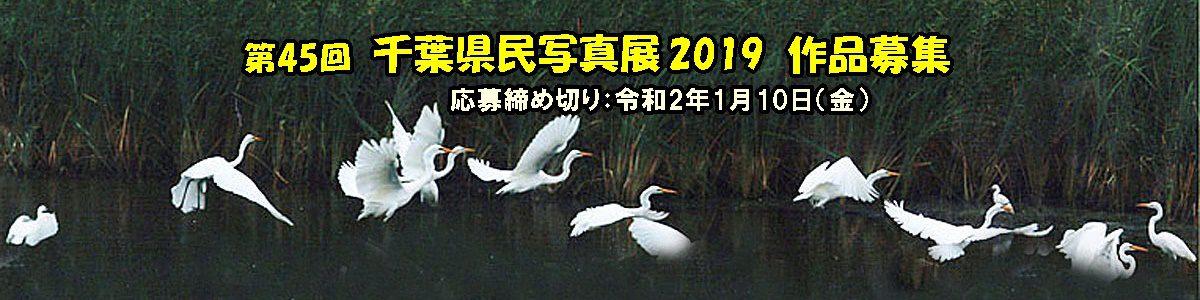 <5枚の手動スライド ショー >第45回千葉県民写真展作品募集については上の写真又は「コンテスト」のページをクリックしてご覧下さい。