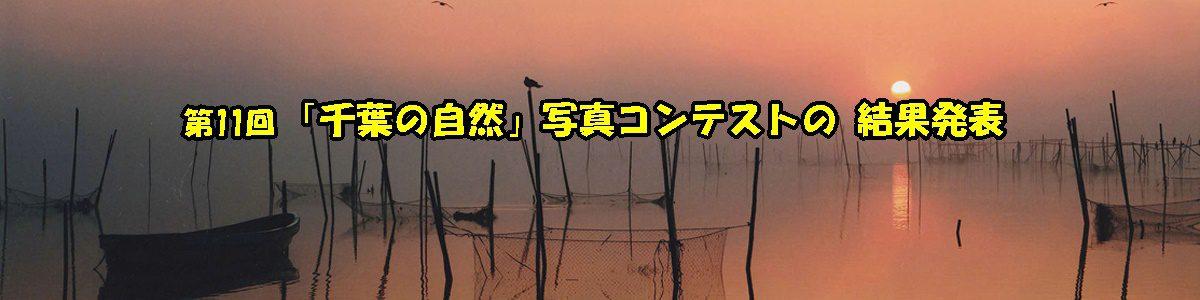 <5枚の手動スライド ショー >第11回「千葉の自然」写真コンテストの結果は、ブログから。