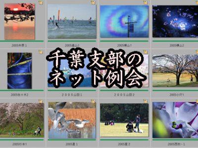 【支部だより】千葉支部 5月ネット例会 結果報告
