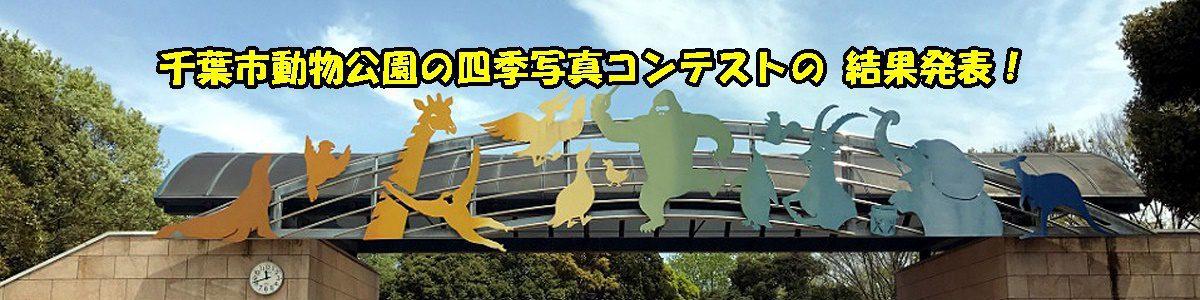 <5枚の手動スライド ショー >昨年の第23回 「千葉市動物公園の四季」写真コンテストの結果は上の写真をクリックまたはブログからご覧下さい