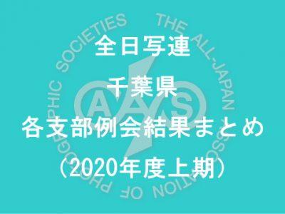 千葉県内の支部例会結果まとめ(2020年度上期)