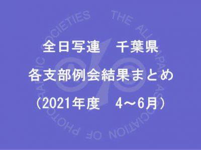 千葉県内の支部例会結果まとめ(2021年度4月~6月)